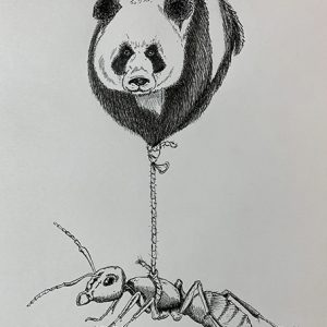 Panda-Mier