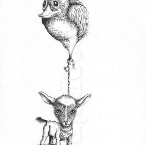 Eend-geit